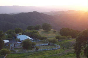 Diablo Ranch weddings,  receptions,  event venue,  ceremon sites,  S.F. Bay Area wedding location,   private event venue,  reception halls,  Walnut Creek reception sites,  ceremony site locations
